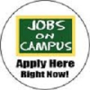 On Campus Job Tip # 2 – Sell yourself instead of applying