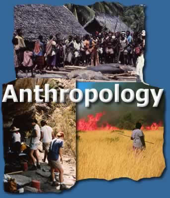 Anthropology what is a college major